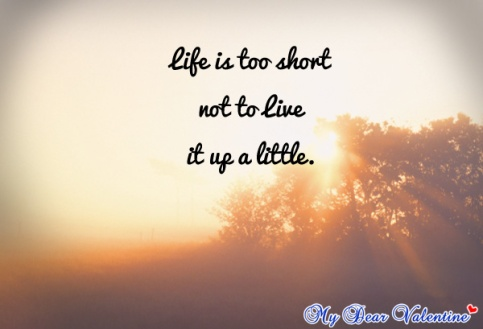 cute-life-quotes-life-is-too-short-not
